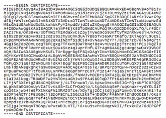 security certificate example.png
